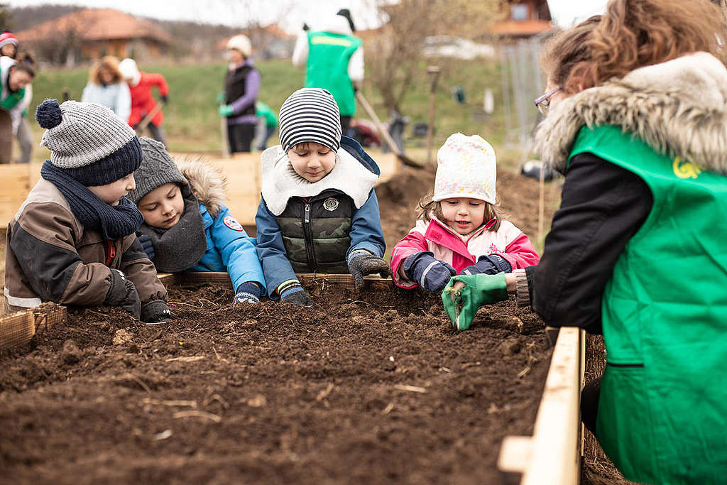 Volunteers Build Raised Beds in a Community Garden in Hungary.  © Zsuzsi Dorgo / Greenpeace