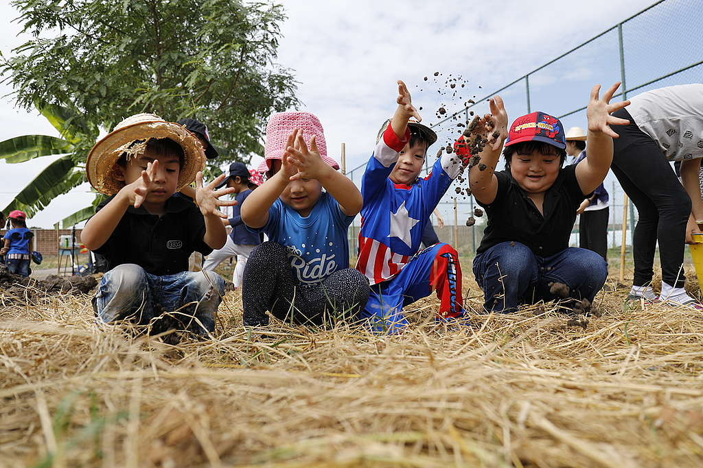 'We Grow' Project Preparation in Thailand. © Roengchai  Kongmuang / Greenpeace