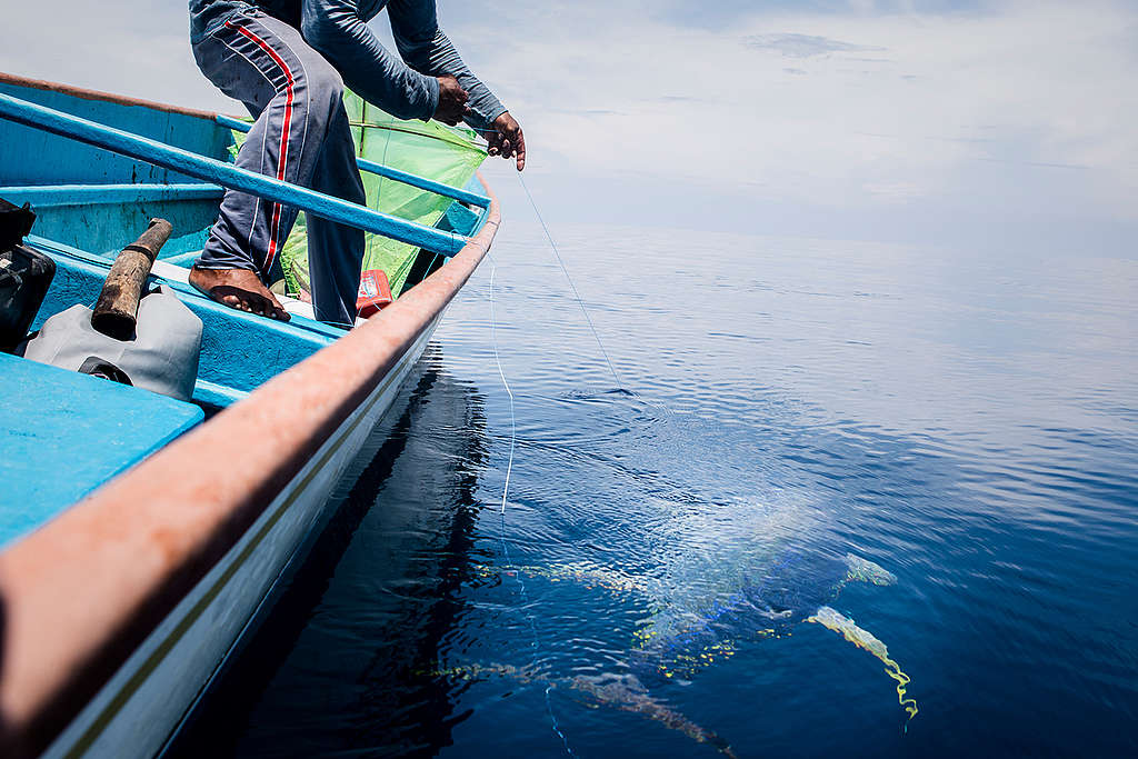 Handline Fishing on Buru Island. © Oscar Siagian / Greenpeace