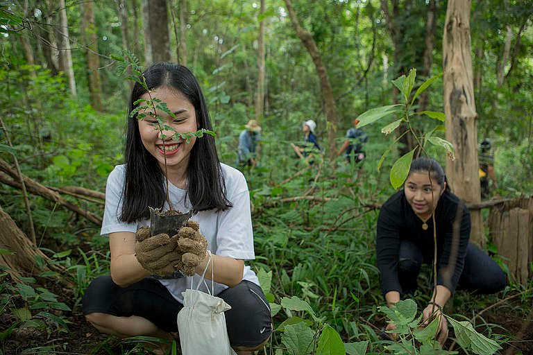 Tree Planting Activity in Chiang Dao, Thailand. © Chanklang  Kanthong / Greenpeace