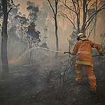 Tony Weston, 62, a Rural Fire Service volunteer firefighter sprays trees on fire on the outskirts of the small town of Numeralla in New South Wales.