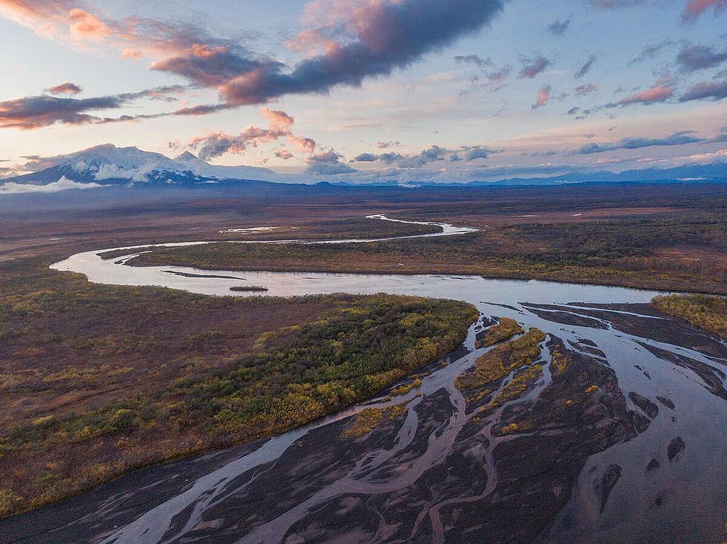 Ecological Disaster in the Kamchatka Peninsula, Russia. © Matvey Paramoshin / Greenpeace