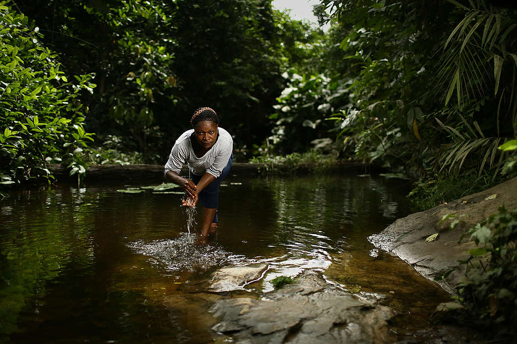 Bagyeli Community Leader in Cameroon. © Micha Patault / Greenpeace