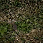 Deforestation of 1,700 Hectares in the Jamanxim APA in the Amazon in Brazil. © Christian Braga / Greenpeace