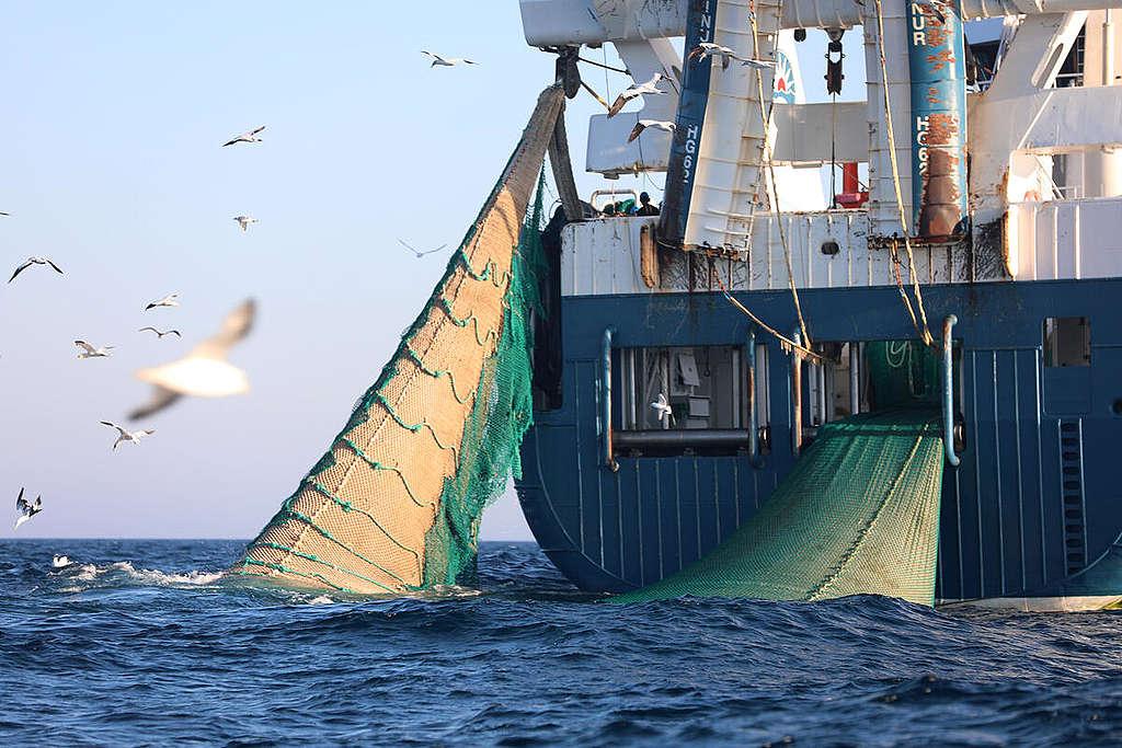 Beinur Trawler in the Dogger Bank. © Greenpeace