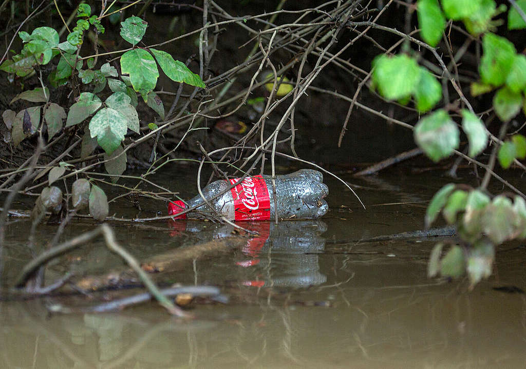 Coca Cola Plastic Pollution in the Anacostia River in Maryland. © Tim Aubry / Greenpeace