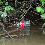 A Coke bottle sits along the banks of the Anacostia River.   Single-use plastic is contaminating our food, our water, and the air we breathe. Trillions of drinks and snacks are sold in throwaway packaging each year, and more ends up in the environment than is recycled. The majority is dumped or burned.