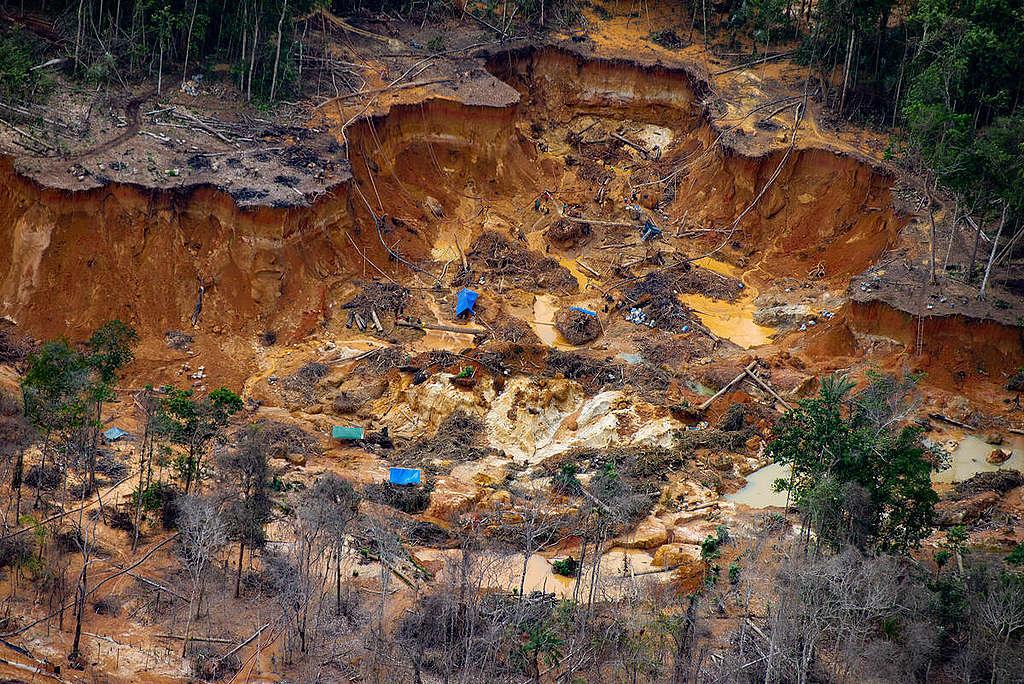 Illegal Mining in Yanomami Indigenous Land in Brazil. © Christian Braga / Greenpeace
