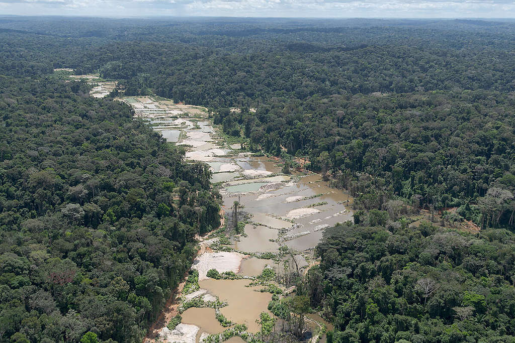A view of mining in the Munduruku Indigenous Land in Brazil from May 2020. © Marcos Amend / Greenpeace