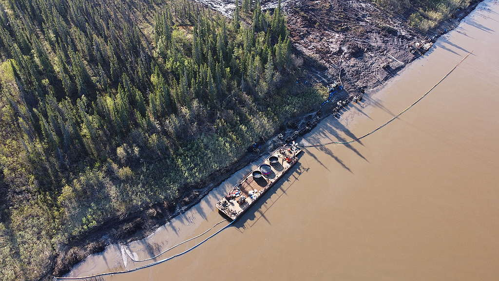 Oil cleanup activities underway at the Kolva river, border of the Nenets Autonomous Region and the Republic of Komi, Russian Federation.  © Greenpeace Russia