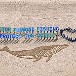 Sand Whale at Haeundae Beach in Busan, S. Korea. © Sungwoo Lee / Greenpeace