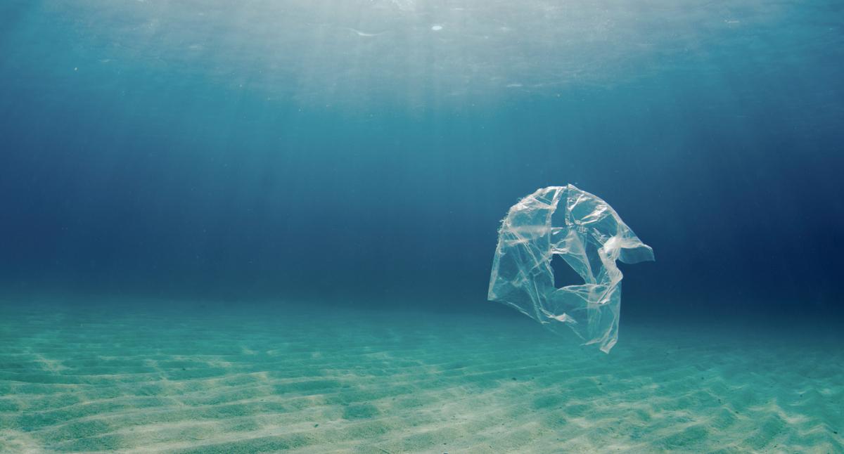 Plastic Pollution in Egypt. © Cherie Bridges / Greenpeace