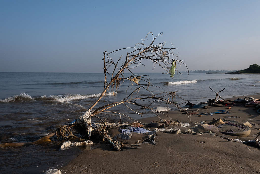 A washed up tree branch on a beach littered with plastic pollution.