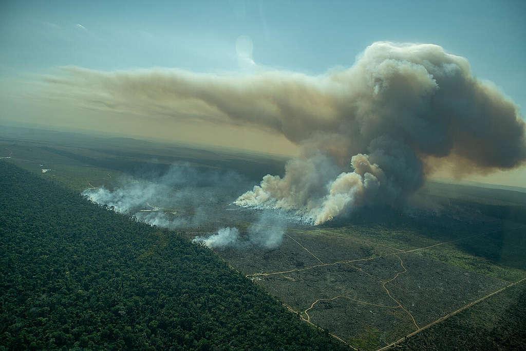 Fire Monitoring in the Amazon in July, 2021. © Christian Braga / Greenpeace