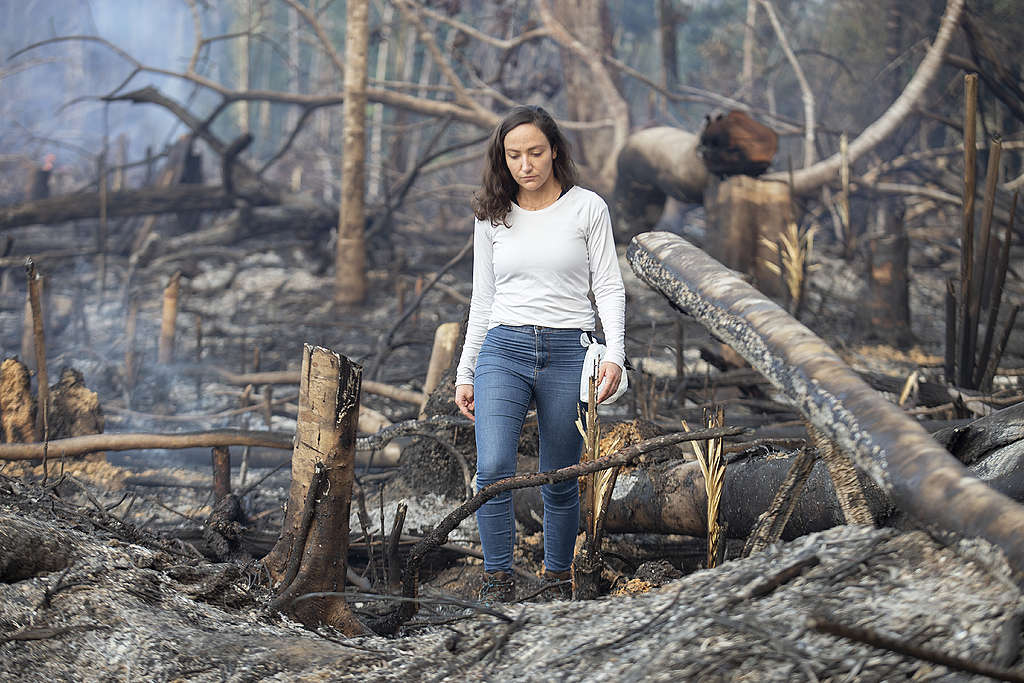 Greenpeace Brazil campaigner Cristiane Mazzetti walks through a recently burned area in the south of the Amazon.