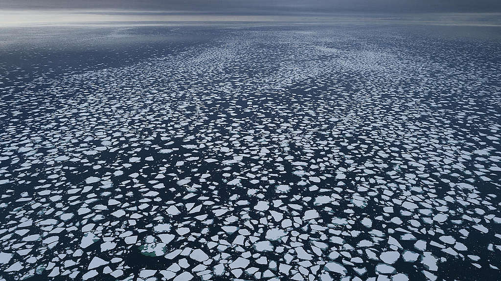 Ice Floes in the Arctic. © Christian Åslund / Greenpeace