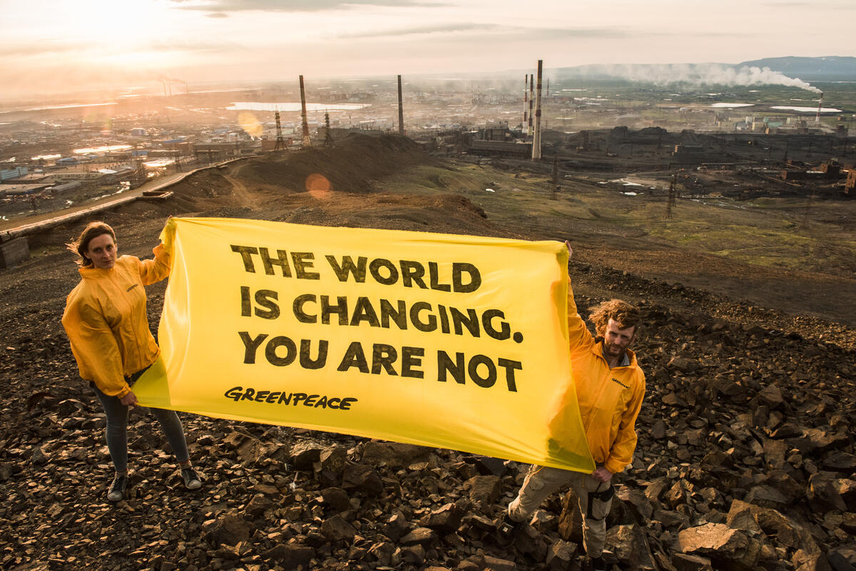 © Dmitry Sharomov / Greenpeace