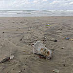 חופים הם לפעמים געגועים לים נקי