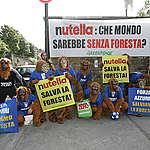 Activists dress in orangutan costumes to visit the Italian football team headquarters in Coverciano, to ask the team to save the forests. The orangutans hold banner that say - Nutella Salva la Foresta - Nutella Save the Forests. One of the main sponsor of the Italian team is Nutella, that belong to Ferrero, the Italian company that use palm oil from Indonesia for its products.