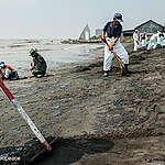 Marea nera in Indonesia