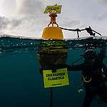 """Operazione """"Mare Caldo"""": i cambiamenti climatici sono anche sott'acqua"""
