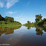 Proteggere la biodiversità significa tutelare la salute