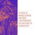 Cosa si nasconde dietro l'interesse di Eni per le foreste