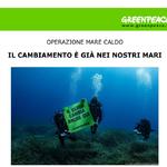 """Il cambiamento è già nei nostri mari: un anno di """"Mare Caldo"""""""