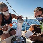 Greenpeace: nuova ricerca con CNR-IAS e UNIVPM rivela presenza diffusa di microplastiche e microfibre nel tirreno centro-settentrionale. «Ora la plastica sia classificata come materiale pericoloso»