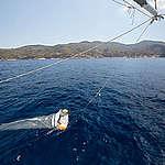 Microplastiche e microfibre nel Mar Tirreno: neanche il lockdown ha diminuito i livello di contaminazione