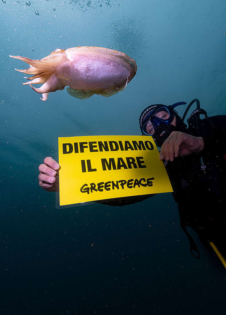 Subito un'area marina protetta per tutelare il Conero