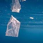 Greenpeace: anche il paradiso delle Tremiti è minacciato dall'inquinamento da plastica