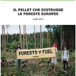 Il pellet che distrugge le foreste europee