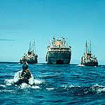 50 anni di Greenpeace: intervista a Rex Weyler