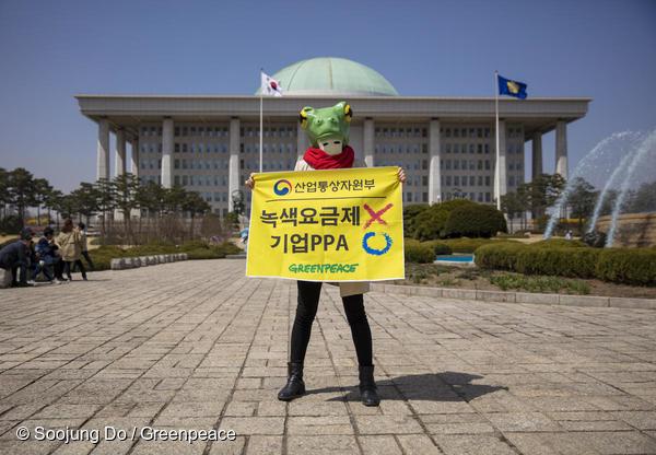 지난 4월 서울 여의도 국회에서 그린피스 행동가가 청개구리 가면을 쓰고 기업 재생가능에너지 구매제약제도(PPA) 도입을 요구하고 있다.
