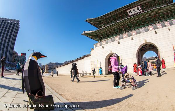 푸른 하늘 서울 광화문 앞에서 관광객 모드로