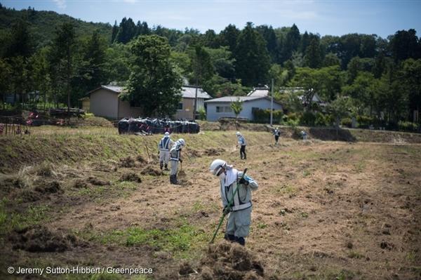 일본 정부는 후쿠시마 이타테 지방에서는 방사성 물질을 제거하는 작업을 진행하고 있지만 농지에서만 제염할 뿐 산 속에 가라 앉은 방사성 물질은 제거하지 못하고 있다.