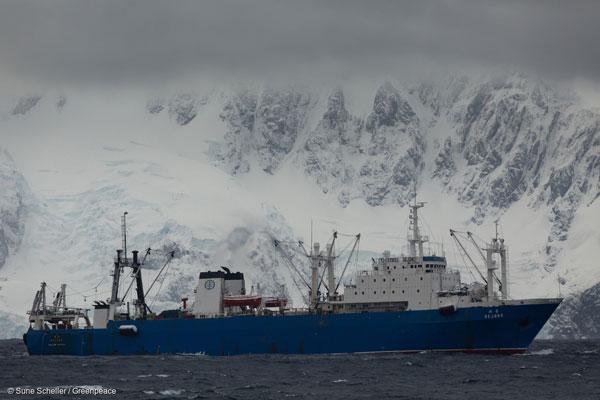 남극 트리니티 섬 인근에서 발견한 한국 크릴 어선 '세종 호'