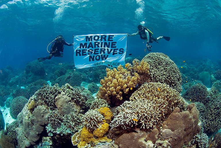 Apo Island Marine Reserve - Philippines 2006