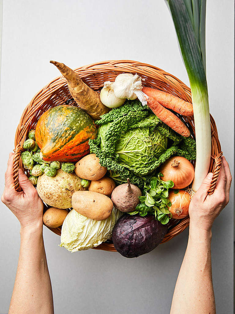 Best Vegetables for Overwintering. © Mitja  Kobal / Greenpeace