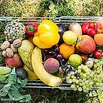Wo bleibt der öffentliche Konsultationsprozess zur Agrarreform in Luxemburg?