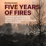 Burning Issues: Five Years of Fire