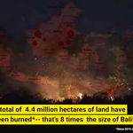 An area eight times the size of Bali has burned in Indonesia in the last five years, new Greenpeace report shows