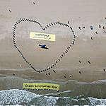 Greenpeace révèle au Maroc une imposante installation artistique d'une baleine portant un message au monde: protégeons nos océans!