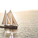 """36 عاماً على إغراق سفينة  غرينبيس """"راينبو واريور"""""""