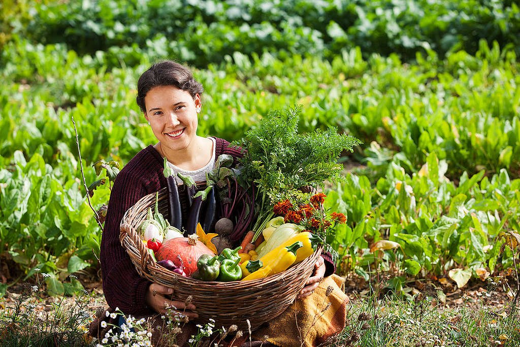 Organic Vegetables in Hungary. © Bence Jardany