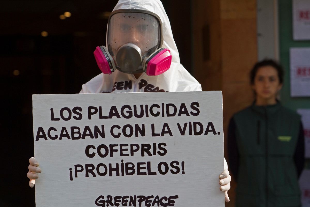 Acción y protesta en COFEPRIS. © Consuelo Pagaza