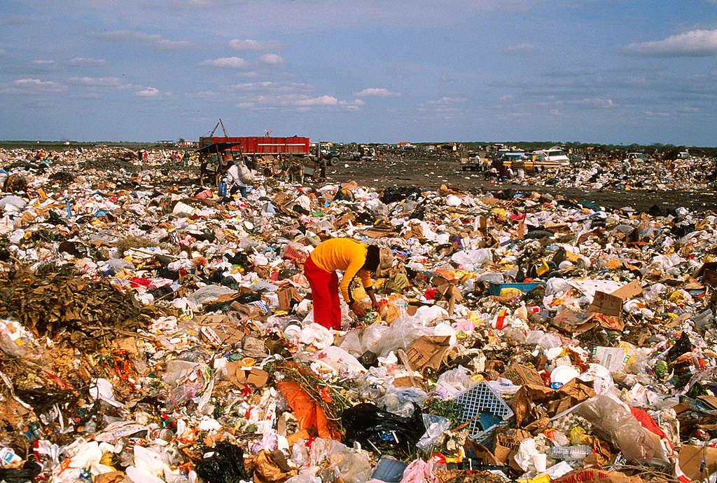 Scavengers on Matamoros dump, Mexico. © Robert Visser