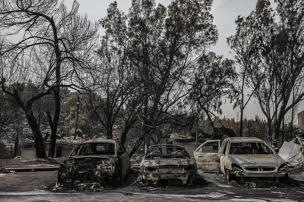 Carros destrozados después del incendio forestal en Israel © Greenpeace