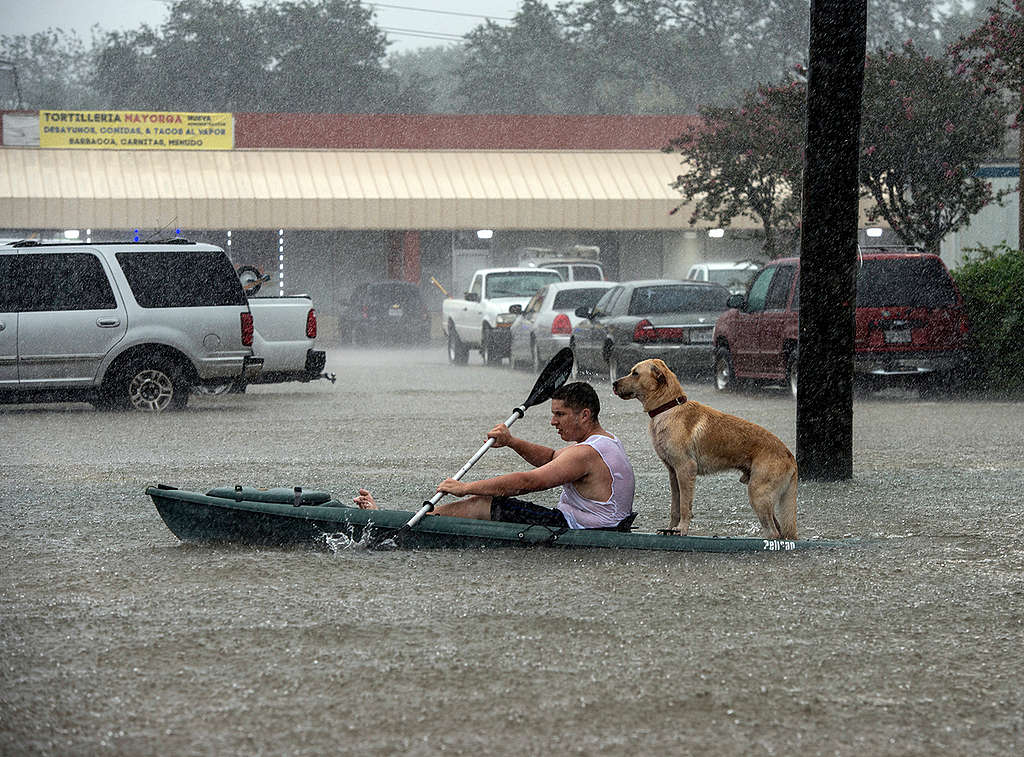 Inundaciones después del huracán Harvey en Texas © Mannie Garcia / Greenpeace